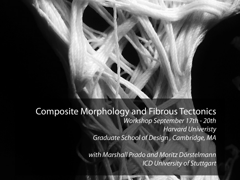 Composite Morphology and Fibrous Tectonics